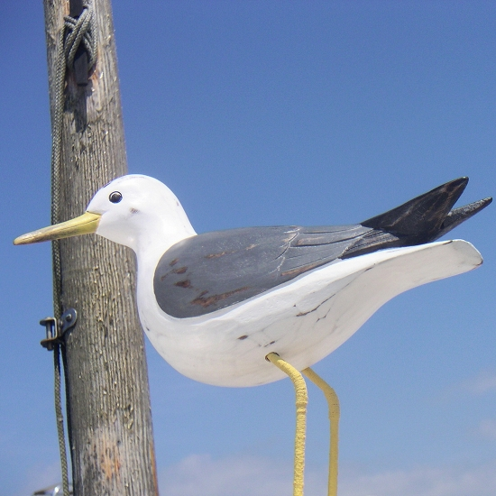 Common Seagull Wooden Bird Hand Carved Birds